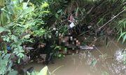 Đã xác định được danh tính người phụ nữ tử vong trong tình trạng lõa thể dưới suối ở Bình Dương