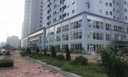 Hoang lạnh dự án tái định cư Nam Trung Yên