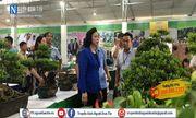 Hà Nội: Công tác chuẩn bị Tổng kết 10 năm thực hiện chương trình mục tiêu Quốc gia về xây dựng Nông thôn mới