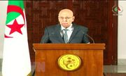 22 ứng cử viên đăng ký tranh cử Tổng thống tại Algeria