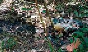 Bắc Giang: Phát hiện thi thể thiếu niên 17 tuổi trong rừng sau khi mất tích hơn 1 tháng