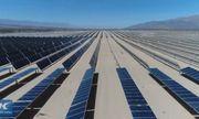 """""""Đột nhập"""" trại quang điện rộng 300 ha chứa tới 290.000 tấm pin mặt trời"""