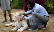 Chán khoe biệt thự, siêu xe, đại gia Pakistan nuôi sư tử như thú cưng sang chảnh