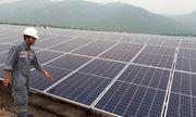 VEA không đồng tình với phương án điện mặt trời một giá