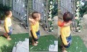 """Em trai 3 tuổi """"khóc hết nước mắt"""" đòi theo chị gái về nhà chồng gây sốt mạng xã hội"""