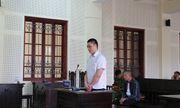 Nghệ An: Đi mua cây keo