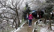 Dự báo mùa đông năm nay có gì bất thường?