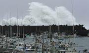 Nhật Bản tan hoang sau siêu bão Hagibis: 164 người thương vong, 16 người mât tích