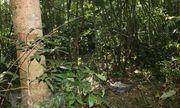 Bình Phước: Nam thanh niên tử vong trong lúc đi săn, nghi do bị trúng đạn