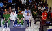 Xét xử vụ gian lận điểm thi tại Hà Giang: Bí ẩn về con lợn nhựa màu xanh lá