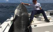 Cần thủ 8 tuổi gây bất ngờ khi câu được con cá mập sát thủ nặng 314kg