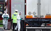 Vụ 39 thi thể trong container ở Anh: Tài xế bất tỉnh sau khoảnh khắc mở thùng xe?