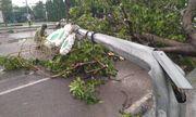 Ảnh hưởng của cơn bão số 5: 900.000 hộ dân miền Trung mất điện, 2 người bị thương