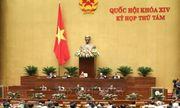Kỳ họp thứ 8, Quốc hội khóa XIV: Ngày thứ 2 thảo luận về kinh tế - xã hội, ngân sách nhà nước