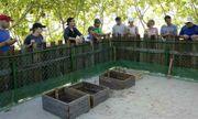 Việt Nam đang vượt lên trên cuộc đua phát triển du lịch xanh