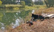 Tin tức đời sống mới nhất ngày 4/11/2019: Cảm động chú chó đợi mãi bên bờ ao khi chủ trượt chân chết đuối