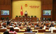 Quốc hội tiếp tục cho ý kiến về công tác tư pháp, phòng chống tội phạm