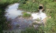 Bắt quả tang công ty giấy xả nước thải ra môi trường