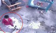 Video: Mèo tinh nhanh cứu em bé khỏi rơi xuống cầu thang 12 bậc