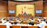 Hôm nay 11/11, Quốc hội biểu quyết thông qua Nghị quyết về kế hoạch phát triển kinh tế - xã hội năm 2020