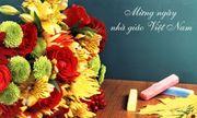 Cách chọn hoa ngày 20 tháng 11 ý nghĩa dành tặng thầy cô