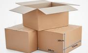 Xu hướng phát triển và sự ảnh hưởng của ngành công nghiệp thùng carton hiện nay
