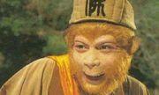 Tây Du Ký: Lý do gì khiến Tôn Ngộ Không giữ chiếc sừng của 3 Tê Ngưu Tinh làm của riêng?