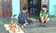 Khánh Hoà: Dịch sán chó  mèo bùng phát, người dân kéo nhau đi viện