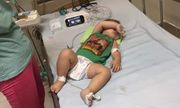 Gia đình có cả 3 con nghi chết vì bệnh Whitmore: Nguồn nhiễm khuẩn từ đâu?