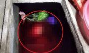 Vụ con rể sát hại mẹ vợ ở Thái Bình: Hé lộ quá trình phát hiện bi kịch dưới bể nước