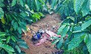 Vụ thi thể nữ giới phân hủy còn bộ xương: Nạn nhân bị sát hại, vứt xác trong rẫy cà phê