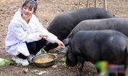 Tin tức đời sống mới nhất ngày 29/11/2019: Ông bố trao thưởng hơn 300 con lợn cho ai chịu lấy con gái