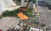 Bình Dương: Phát hiện thi thể người đàn ông dưới sân chung cư
