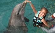 Tin tức đời sống mới nhất ngày 3/12/2019: Bơi trải nghiệm cùng cá heo, bé 10 tuổi bị tấn công dữ dội