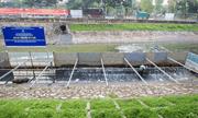 JEBO sẽ đầu tư 100% chi phí cho việc làm sạch sông Tô Lịch?