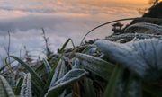Tin tức dự báo thời tiết mới nhất hôm nay 6/12/2019: Miền Bắc trời rét, vùng núi có băng giá