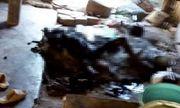 Kon Tum: Người phụ nữ chết cháy thương tâm vì quấn chăn ngủ cạnh bếp lửa