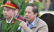 Cựu Bộ trưởng Trương Minh Tuấn: Ông Son chỉ đạo đưa thương vụ AVG vào diện mật