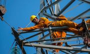Tập đoàn điện lực EVN lãi bao nhiêu trong năm 2018?