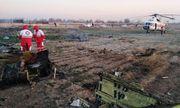 Máy bay Boeing 737 rơi tại Iran, toàn bộ 170 người thiệt mạng