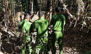 Tây Ninh: Công an điều tra vụ phát hiện 2 hộp sọ người trong chiếc vali ở vườn cao su