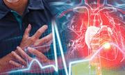 Đông dược cho bệnh tim mạch thời @: Không phải dược liệu càng nhiều, hàm lượng càng cao là tốt!