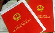 Phát hiện đường dây chuyên làm sổ đỏ giả để vay vốn trả nợ tại Bình Định