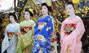 Phong tục ăn Tết truyền thống của người Nhật Bản