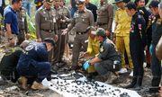 Kinh hoàng phát hiện 288 khúc xương được tìm thấy dưới ao gần nhà nghi phạm giết người