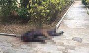 Vụ vợ chồng cụ ông 75 tuổi ở Hưng Yên bị truy sát: Nghi phạm đối mặt với hình phạt nào?