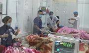 Ăn trứng cóc, 8 người trong một gia đình nhập viện, 1 người tử vong