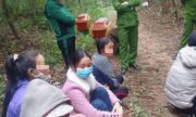 Đi du xuân ngày mồng 5 Tết, phát hiện 2 thi thể thanh niên ở bìa rừng