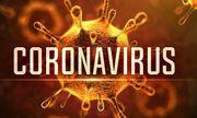 Hai bệnh nhi người Trung Quốc ở Hải Dương và Quảng Ninh không nhiễm virus corona