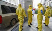 Người bình phục vẫn có nguy cơ tái nhiễm virus Corona